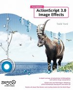 Foundation ActionScript 3.0 Image Effects