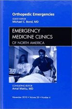Orthopedic Emergencies, an Issue of Emergency Medicine Clini