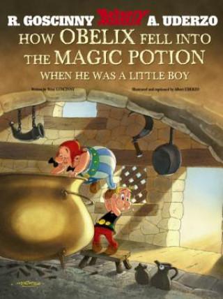 Asterix: How Obelix Fell Into The Magic Potion