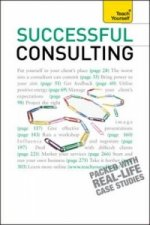 Successful Consulting: Teach Yourself