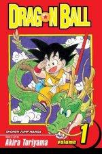 Dragon Ball, Vol. 1