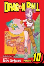 Dragon Ball, Vol. 10