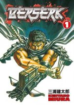 Berserk Volume 1: The Black Swordsman