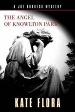 Angel of Knowlton Park
