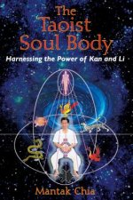 Taoist Soul Body