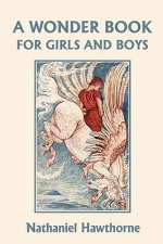 Wonder Book for Girls and Boys, Illustrated Edition (Yesterd