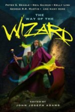 Way of the Wizard