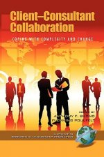 Client-consultant Collaboration: Coping with Complexity and