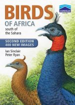 Chamberlain's Birds of Africa South of the Sahara
