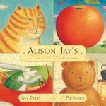 Alison Jay's First Picture Blocks