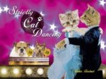 Strictly Cat Dancing