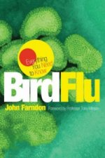 Everything You Need to Know: Bird Flu