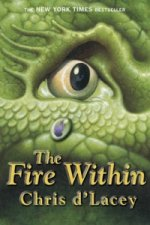 Last Dragon Chronicles: The Fire Within