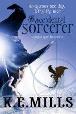 Accidental Sorcerer
