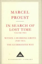 In Search Of Lost Time Volume 2