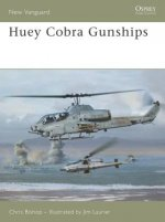 Huey Cobra Gunships 1965-2005