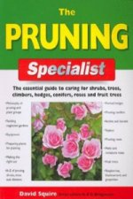 Pruning Specialist