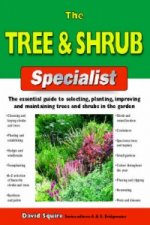 Tree and Shrub Specialist