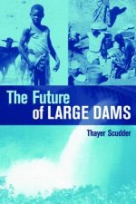 Future of Large Dams