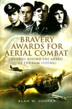 Bravery Awards for Aerial Combat