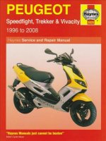 Peugeot Speedfight, Trekker (TKR) and Vivacity Service and R
