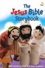 Jesus Bible Storybook