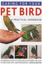 Caring for Your Pet Bird