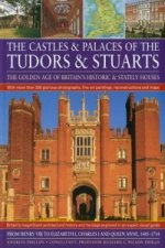 Castles and Palaces of the Tudors and Stuarts