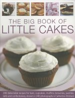 Big Book of Little Cakes