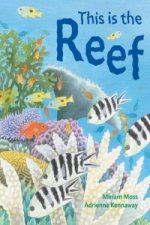 This is the Reef