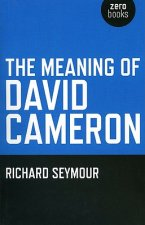 Meaning of David Cameron