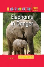 Elephants in Danger