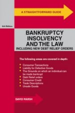 Straightforward Guide to Bankruptcy, Insolvency and the Law