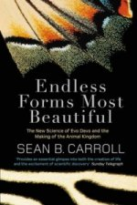Endless Forms Most Beautiful