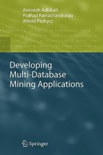 Developing Multi-Database Mining Applications
