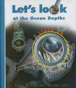 Let's Look at the Ocean Depths
