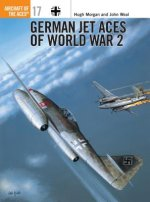 Luftwaffe Jet Aces of World War 2
