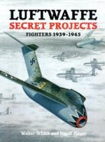 Luftwaffe Secret Projects