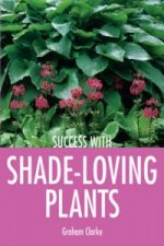 Shade-loving Plants