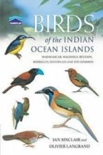 Chamberlain's Birds Indian Ocean