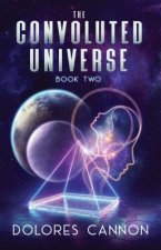 Convoluted Universe: Book Two