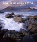 Developing Vision and Style