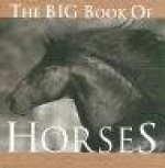 Big Book of Horses