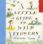 Little Guide to Wild Flowers