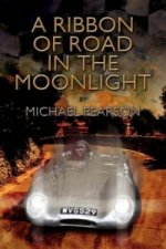 Ribbon of Road in the Moonlight