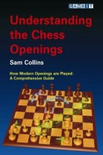 Understanding the Chess Openings