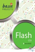 Basic Projects in Flash