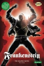 Frankenstein (Classical Comics)