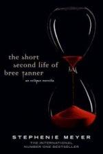 Short Second Life Of Bree Tanner