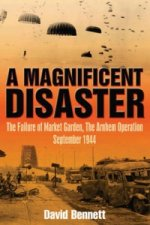 Magnificent Disaster